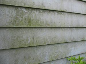 伊東市別荘 H様邸 外壁塗装